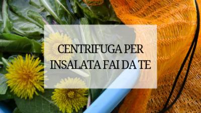 centrifuga pe insalata